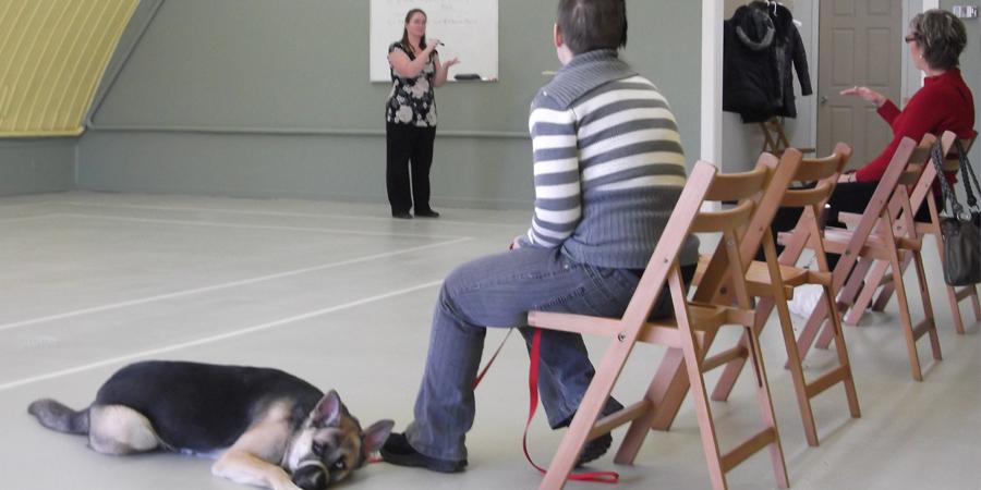École de dressage pour chiens - Dressage Claudine Chantal